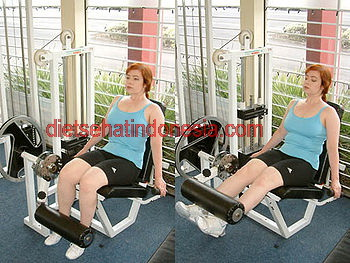 Leg Extension Machine Exercise